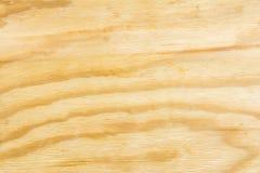 Textura ligera de la madera contrachapada del abedul, fondo abstracto Imagen de archivo libre de regalías