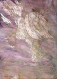 Textura limpada do watercolour Imagem de Stock