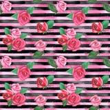 Textura listrada da forma das rosas fotos de stock royalty free