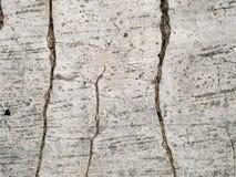 Textura macra - concreto - agrietada Fotos de archivo libres de regalías