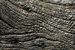 Textura macra de madera gris envejecida para el fondo Foto de archivo
