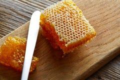 Textura macra del detalle del panal de la miel Fotos de archivo libres de regalías