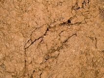 Textura macra - tierra - seca y agrietada Imágenes de archivo libres de regalías