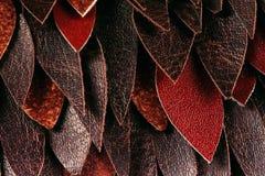 Textura macro das folhas de couro Foto de Stock Royalty Free