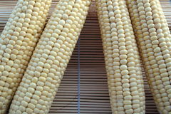 Textura macro do fundo do milho saboroso, suculento Fotografia de Stock Royalty Free