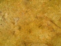 Textura macro - pedra - mottled imagens de stock