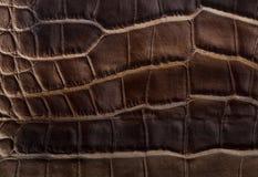 Textura marrom de couro Imagens de Stock Royalty Free