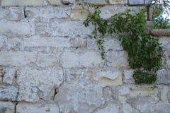 Textura masonry Fragmento da parede antiga horizontal imagem de stock