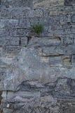 Textura masonry Fragmento da parede antiga vertical imagens de stock