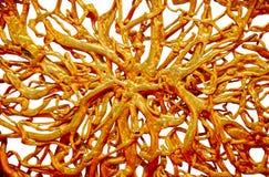 Textura metálica del oro Imagenes de archivo