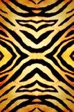 Textura moderna abstrata da tela Imagem de Stock