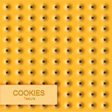 Textura moderna da cookie do vetor Fundo do alimento Fotos de Stock Royalty Free