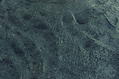 Textura mojada del cemento para el fondo Piso concreto mojado Fotografía de archivo libre de regalías