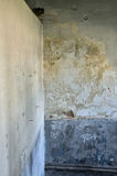 Textura Moldy da parede Imagem de Stock Royalty Free