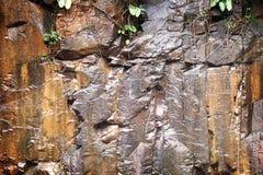Textura molhada da rocha Foto de Stock