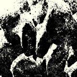 Textura monocromática del grunge de la pintada Imagenes de archivo