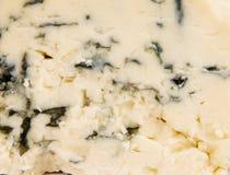 Textura Mouldy do queijo Imagens de Stock Royalty Free