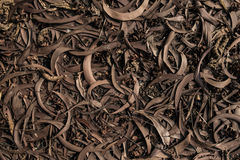Textura muerta de las hojas Foto de archivo libre de regalías