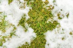 Textura na neve do close-up na grama foto de stock