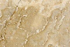 Textura natural da rocha Imagem de Stock