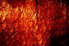 Textura natural de los exuviae Fotografía de archivo