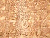 Textura natural de una pared de la piedra arenisca Figuras extrañas de dos hombres en el fondo venoso Fotografía de archivo libre de regalías