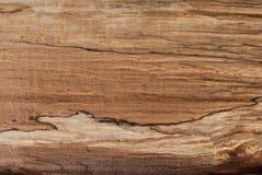 Textura natural del árbol para el fondo y el diseño fotografía de archivo
