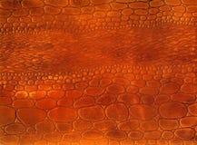 Textura natural vermelha do couro do réptil Fotos de Stock