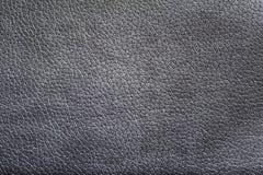 Textura negra de la piel Imagen de archivo libre de regalías