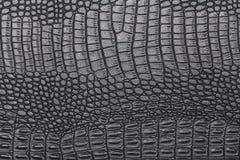 Textura negra de la piel del cocodrilo Fotos de archivo