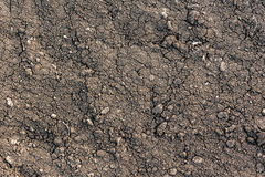Textura negra de la tierra Fotos de archivo libres de regalías