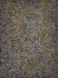 Textura o fondo de piedra Ciérrese para arriba del fondo superficial de piedra Imagenes de archivo