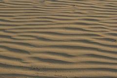 Textura ondulada da areia coral amarela brilhante para Fotos de Stock