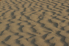 Textura ondulada da areia coral amarela brilhante para Imagens de Stock Royalty Free