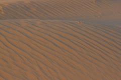 Textura ondulada da areia para o fundo no por do sol Imagens de Stock