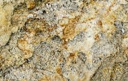 Textura Oolitic da pedra calcária Imagens de Stock