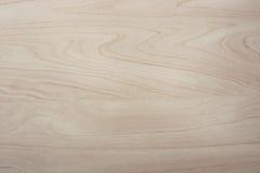 Textura ordenhada da grão da madeira de vidoeiro Fotografia de Stock
