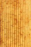 Textura orgánica Imágenes de archivo libres de regalías