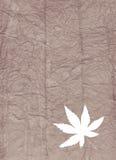 Textura orgánica con la hoja Imagenes de archivo