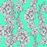 Textura ornamentado sem emenda do teste padrão do esboço floral botânico do desenho de lápis da flor no fundo azul brilhante para fotos de stock