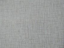 Textura ou fundo de papel da aquarela Imagem de Stock