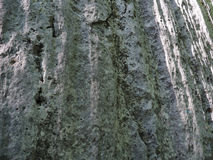 Textura ou fundo de pedra Foto de Stock Royalty Free