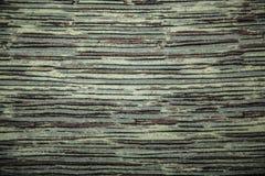 Textura ou fundo verde da lona Fotografia de Stock Royalty Free