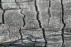 A textura ou o fundo do log de madeira carbonizado ou queimado fotografia de stock