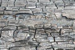 A textura ou o fundo do log de madeira carbonizado ou queimado imagens de stock