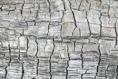 A textura ou o fundo do log de madeira carbonizado ou queimado fotografia de stock royalty free