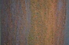 Textura oxidada de la hoja Fotos de archivo