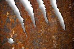 Textura oxidada rasgada do metal sobre o branco Foto de Stock