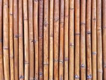 Textura parede ou da cerca de bambu do bambu imagem de stock