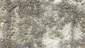 Textura pedregosa sucia del fondo de la pared Imagen de archivo libre de regalías